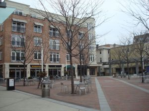 Mid-rise development adds to the vibrancy of downtown Princeton as well as protecting against global warming.