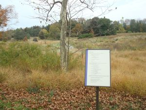 Signs in the D&R Greenway display poetry to complement the natural setting. (click to expand