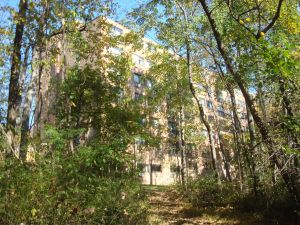 Holly House, in Princeton Community Village, built 1974, is high-density in the forest. (Click to expand.)