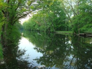 The D&R Canal near Princeton. (Click to expand.)