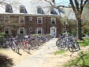 A sea of bicycles outside Princeton University's Forbes College. Princeton cyclists may benefit from more organized municipal policy in 2014. (click to expand.)