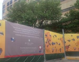 Hoardings covered with drawings by local kids surround the old Princeton Hospital on Witherspoon Street as asbestos removal takes place. (click to expand.)