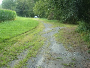 Existing gravel path shows that a surface such as this tends to deteriorate quickly. (click to expand.)