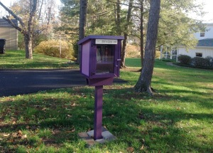 Another Little Free Library at Leabrook Lane and Linden Circle in Princeton (click to expand).