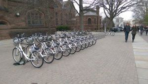 Sustainable: Bikeshare bikes outside Firestone Library on Princeton University campus. (click to expand)