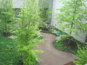 Interior courtyard of the Andlinger Center, with walking path (click to expand)