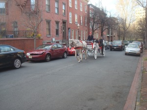 Horse and buggy rides as part of Mill Hill House tour. (click to expand)